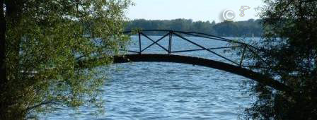 This is a curved bridge that is viewable between two trees with a blue lake in the background. There is a line of trees visible on the other side of the lake under a light blue sky.