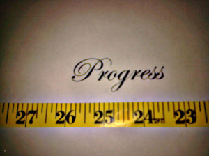 This picture was taken by the Positiving owners. It is a picture of a measuring tape showing numbers 23 thru 27 (from right to left). Above it is the word Progress in black ink on a white sheet of paper printed from a computer using an artistic font. The background is gray, lighter in the middle and gets darker around the edges. The picture is purposefully out of focus.